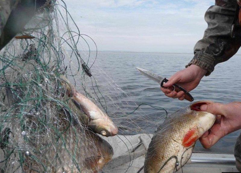 закон о рыбалке 2017 архангельская область